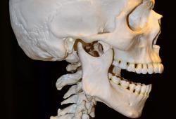 过伸性颈脊髓损伤诊疗临床循证指南