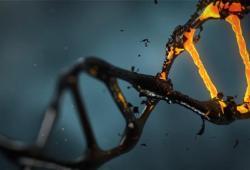 Science颠覆性发现:抑癌基因突变后,通过逃避免疫系统监控而导致癌症