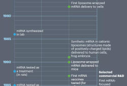 Nature:诺奖级mRNA疫苗发展史中,数百位研究人员谁是最重要的贡献者?