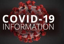 Toll样受体激动剂治疗COVID-19,II期试验显示积极的顶线结果