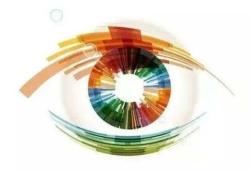 Nat Commun:GLIS1调节小梁网功能和眼压影响青光眼的发生