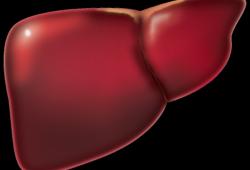 中国肝细胞癌经动脉化疗栓塞(TACE)治疗临床实践指南(2021年版)