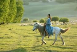 JNER:骑马有助于脑瘫儿童恢复?