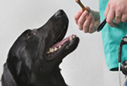 JAMA Psychiatry:抗抑郁治疗的个体差异有多大?