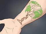 Circulation:金砖国家近25年心血管疾病死亡率的变化趋势