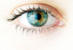 X-连锁色素性视网膜炎(XLRP)基因疗法I/II期临床:显著改善视网膜敏感性
