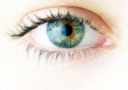 """X-连锁色素性<font color=""""red"""">视网膜</font>炎(XLRP)基因疗法I/II期临床:显著改善<font color=""""red"""">视网膜</font>敏感性"""