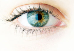 "X-连锁色素性视网膜炎(XLRP)<font color=""red"">基因</font><font color=""red"">疗法</font>I/II期临床:显著改善视网膜敏感性"