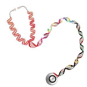 Bone Research :骨密度和非骨表型之间多效性的全基因组相关性研究