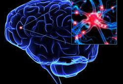 JCO:rCOJEC,国际高危神经母细胞瘤患者的首选诱导方案