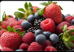 """FASEB J:研究发现,蓝莓中的这种多酚类<font color=""""red"""">化合</font><font color=""""red"""">物</font>可改善结肠炎症"""