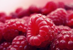 Blood:紅細胞生成終末階段蛋白重構、細胞器清除的調節機制