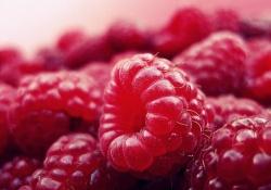"""Blood:<font color=""""red"""">红细胞</font>生成终末阶段蛋白重构、<font color=""""red"""">细胞</font>器清除的调节机制"""
