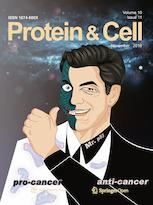 PROTEIN CELL