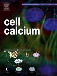 CELL CALCIUM