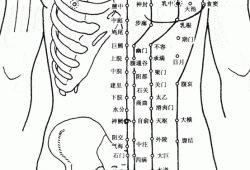 人体前部穴位图