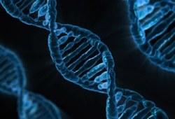 2015药物代谢酶和药物作用靶点基因检测技术指南(试行)概要发布