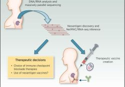 Science:两款个体化肿瘤疫苗成功阻止黑色素瘤复发