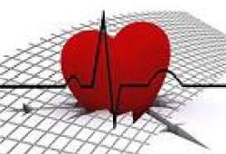 Eur Heart J:线粒体DNA拷贝数和猝死之间的关联分析!