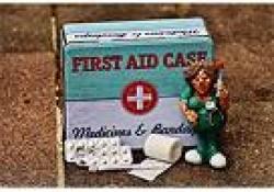 Intens Care Med:降钙素原可以作为重症患者中暑的标志物吗?