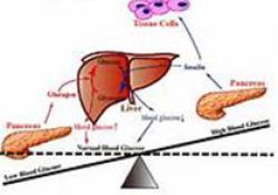 Gut:丁酸通过肠脑神经网络降低食欲并激活棕色脂肪组织