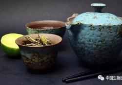 J Biol Chem:绿茶能降低心脏病风险?