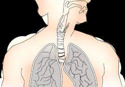 JCO:替莫唑胺治疗小细胞肺癌:随机双盲研究