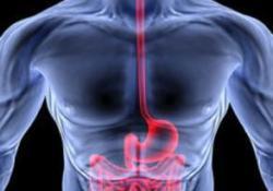 Gastroenterology: 非静脉曲张性上消化道出血患者30天内再入院率的情况分析