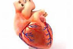 JACC:冠心病患者低舒张压与心绞痛呈相关性