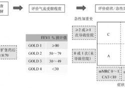 这些慢阻肺新病情评估方法尚未收录入GOLD 2018,它们对患者预后有何指导意义?