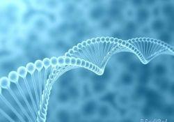 GUT: 甲基化循环DNA生物标志物可以用来监测转移性结直肠癌的治疗反应