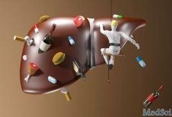 GUT : 酒精通过FoxO1调节肝细胞中的miR-148a以及通过TXNIP过表达来促进肝细胞凋亡