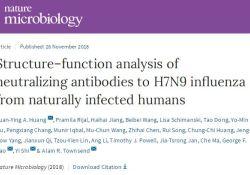 "Nat Microbiol:研究揭示自然感染病人<font color=""red"">体内</font>针对H7N9禽流感中和抗体的保护机制"