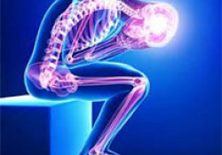 "Radiology:半<font color=""red"">自动</font>CT分析软件帮你诊断腕关节运动学异常!"