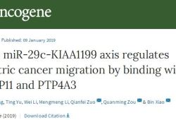 Oncogene:鉴定出非编码RNA调控的新促癌基因