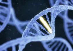 """科学家在亚洲人群中证实,吸烟、<font color=""""red"""">喝酒</font>会大大加速正常食道细胞致癌突变的积累"""