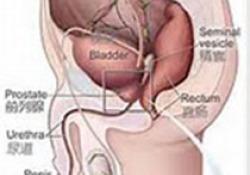 【盘点】肾脏相关疾病进展