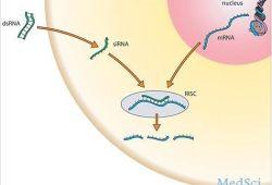 2019年欧洲肝脏研究协会(EASL)年会:RNA干扰药物JNJ-3989的临床数据