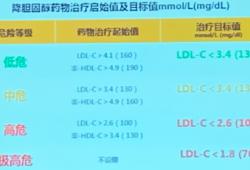 OCC2019   陈桢玥教授:适合中国人群的调脂药物