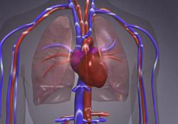 """JAMA Cardiol:美国医疗补助扩展与<font color=""""red"""">心血</font><font color=""""red"""">管</font>死亡率的关系"""
