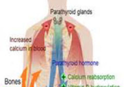 "Eur Respir J:胸膜感染患者合并症和<font color=""red"">结局</font>"