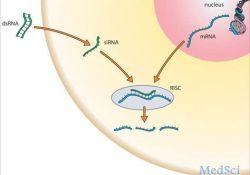RNAi疗法的新靶点:V122I是一种普遍存在的致病性转甲状腺素(TTR)突变