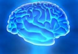 "Radiology:ASPECTS区域<font color=""red"">X</font><font color=""red"">线</font>密度改变与急性缺血性脑卒中动脉取栓时间窗"
