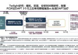 "TCT 2019   TWILIGHT研究重磅发布,高危PCI患者使用替格瑞洛<font color=""red"">单</font><font color=""red"">药</font><font color=""red"">治疗</font>获益显著"