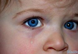 "Eye:<font color=""red"">屈</font><font color=""red"">光</font><font color=""red"">不正</font>的严重程度是否取决于早产儿视网膜病变治疗时激光消融的数量和程度?"