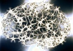 "Neurology:<font color=""red"">脑出血</font>周围水肿<font color=""red"">与</font>血肿形状有关"