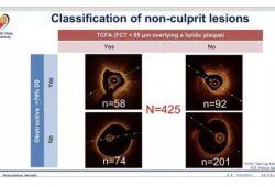 AHA2019丨STEMI患者的非罪犯血管斑块形态:COMPLETE试验OCT亚组研究结果