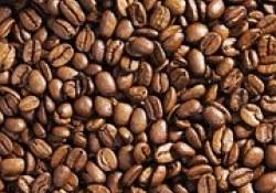 "JCEM:<font color=""red"">咖啡</font>摄入的血清代谢组及其与骨密度的关系"