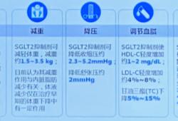 SGLT2抑制剂临床应用专家指导建议解读 | CDS2019