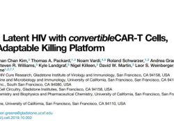 "Cell:CAR-T被<font color=""red"">改造</font>后有望攻克艾滋病"